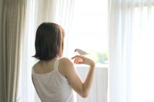 お部屋の窓のハウスクリーニング