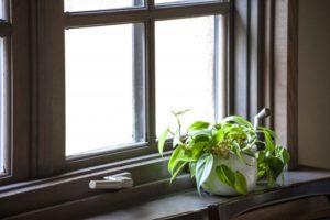お部屋の窓はどんな汚れ?