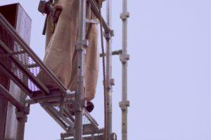 建設業界とハウスクリーニング業界